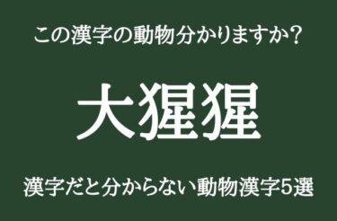 【動物の漢字】「大猩猩」「馴鹿」この漢字読めますか??