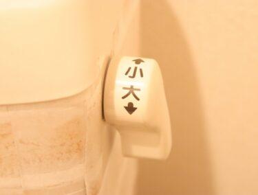 【すぐできる節水術】トイレの大小レバーの正しい使い分け方とは?