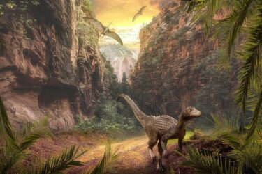恐竜はなぜ絶滅してしまったのか?原因は隕石にある?